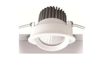 Downlight Adjustable Ceiling light