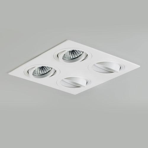 Quad Adjustable Interior Downlight
