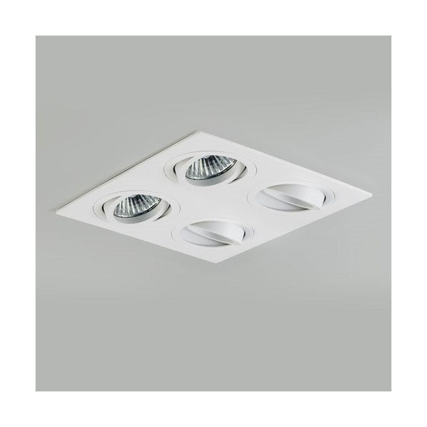 Quad Adjustable Interior Downlight
