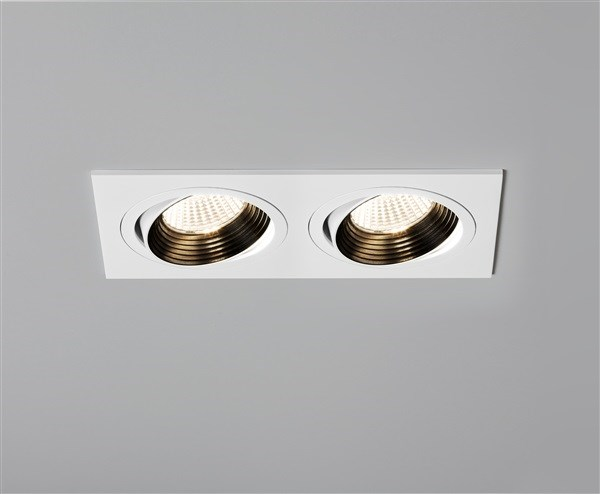 with Twin Adjustable LED Downlight