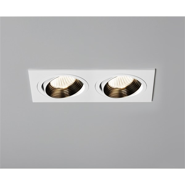 Twin Adjustable LED Downlight